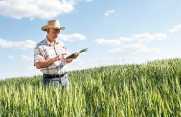 Dúvidas sobre renegociação do crédito rural em tempos de estiagem
