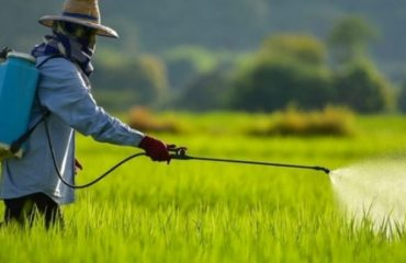 Estados prorrogam benefícios fiscais de insumos agrícolas e agrotóxicos até 2025