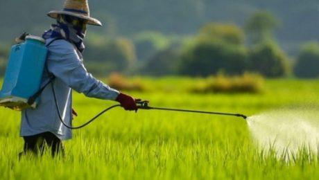 STF julga isenção tributária de agrotóxicos