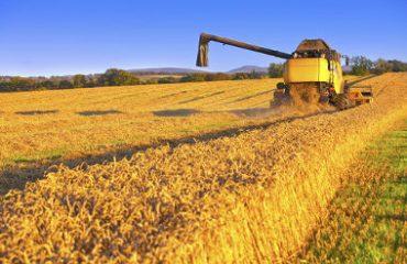 CMN autoriza a renegociação de empréstimos e a prorrogação de pagamentos de produtores rurais